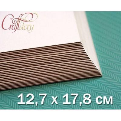 Cardboard 12.7 x 17.8 cm (5 x 7 inch)